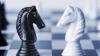 Объявляется набор желающих поучаствовать в шахматном турнире на Кубок Publika TV
