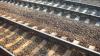В Молдове построен первый участок железной дороги по европейским стандартам
