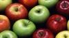 Россельхознадзор забраковал две партии молдавских яблок