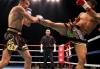 Молдавские бойцы выиграли 11 из 12  финалов Кубка Молдовы по К-1