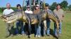 В Миссисипи поймали аллигатора с рекордным весом