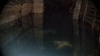 Подвал многоэтажки в Дурлештах постоянно затоплен