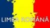 """Кишиневские власти о запрете термина """"румынский язык"""": гагаузские политики уже готовятся к выборам"""