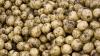 Власти КНДР выдали жителям полтонны картофеля