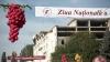 Иностранцы на празднике вина в Кишиневе