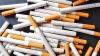 Пограничные полицейские задержали с контрабандными сигаретами двоих несовершеннолетних