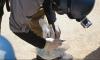 Эксперты по химоружию завершили инспекции в Сирии
