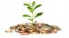 В РМ зарегистрирован рост инвестиций в свободные экономические зоны
