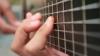 После сотрясения мозга у подростка из Колорадо открылся музыкальный талант