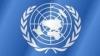 Германия и Бразилия потребовали принять резолюцию о защите права на частную жизнь