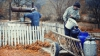 Проблемы окружающей среды в Молдове: люди пьют некачественную воду и не имеют доступа к канализации