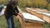 Пчеловод из Шолданештского района приобрел за счет ЕС мобильную установку для сбора мёда