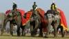 В Непале прошел традиционный международный фестиваль слонов