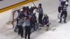 Во время матча женских сборных США и Канады  на льду произошла массовая драка