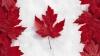 Снежная буря парализовала восточную часть Канады