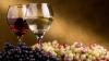 «Либерализация рынка ЕС для поставок молдавского вина означает признание качества этой продукции»