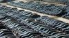 Наибольшей популярностью у молдаван пользуются подержанные авто