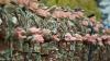 Военнослужащий, зарубивший топором односельчанина, получил свыше восьми лет тюрьмы