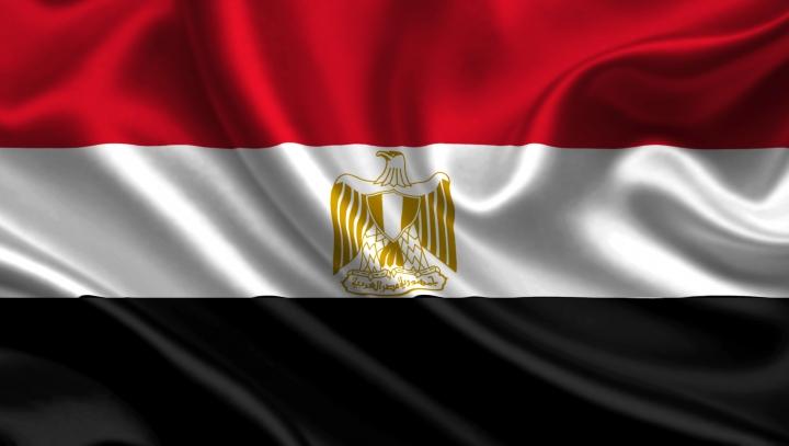 Каир: большинство египтян одобрили проект конституции