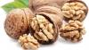 Налог на экспорт орехов будет отменен