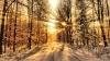 До конца этой недели синоптики прогнозируют потепление до +11 градусов Цельсия