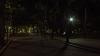 Многие парки столицы освещаются слабо или вовсе лишены иллюминации