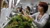 В Колорадо обнародовали первые отчеты о налогах с продаж марихуаны