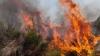 Лесные пожары полыхают на юго-востоке Австралии