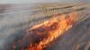 Более ста гектаров лесов и полей пострадали от пожаров за последние сутки