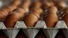 На пасхальные праздники продажи яиц, мясной и хлебобулочной продукции выросли в среднем на 15%