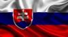 В Тбилиси вместо российского флага по ошибке сожгли словацкий