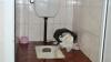 Отвратительные туалеты столичных медучреждений (ФОТО)