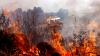 Российский водитель решился на поездку по тайге, объятой пожаром (ВИДЕО)