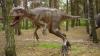 Ученые: динозавры не вымерли, а превратились в птиц