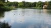 Специалисты Центра общественного здоровья обнаружили в озерной воде и пляжном песке опасные бактерии