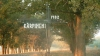 Проблемы жителей села Кэрпинень Хынчештского района: аварийный мост, плохой стадион, нет уличного освещения
