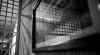 Адвоката приговорили к году тюрьмы за взяточничество