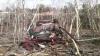 Американка восемь дней пролежала в машине после аварии и выжила