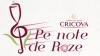 Крикова Open Air-2014: В ритмах Roze!