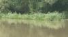 """""""У Молдовы есть голос"""": жители села Мэкэрешть говорят, что дамбу на берегу реки Прут необходимо укрепить"""