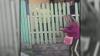 Десятки жителей села Суручены Яловенского района ссорятся из-за границ земельных наделов