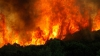 В окрестностях города Сан-Диего бушуют лесные пожары (ВИДЕО)