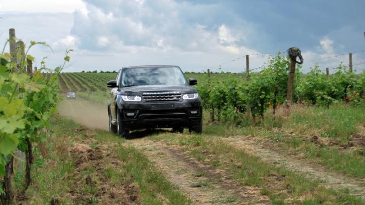 Солнце, воздух, виноградники, вино и Land Rover – это круто