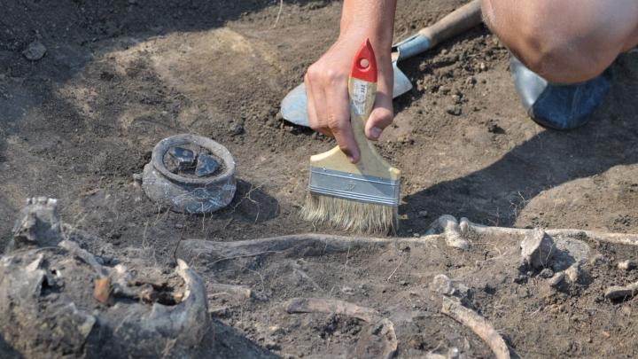 В Ирландии археологи обнаружили скелет младенца, захороненного более 3 тыс.лет назад