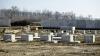 Двое экс-мэров села Корлэтень обвиняются в незаконном отчуждении земельных участков