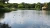 Жители села Григорешть требуют, чтобы забор, которым обнесли местное озеро, убрали