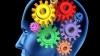 Найден участок мозга, который отвечает за совесть