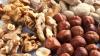 Ученые создали орехи, не вызывающие аллергии