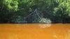В Мексике токсичные вещества из шахты попали в реку