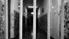 Женщине из Милештий Мичь грозит тюрьма за детоубийство (ВИДЕО)